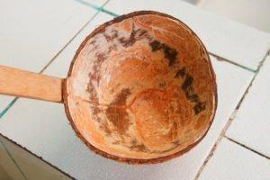 Mendeteksi titik-titik sumber mata air melalui tempurung kelapa